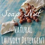 soap nut homemade laundry detergent