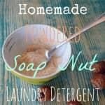 soap nut powder homemade laundry detergent