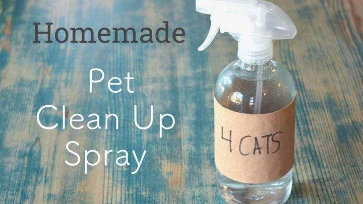 How To Make Homemade Pet Cleaning Spray