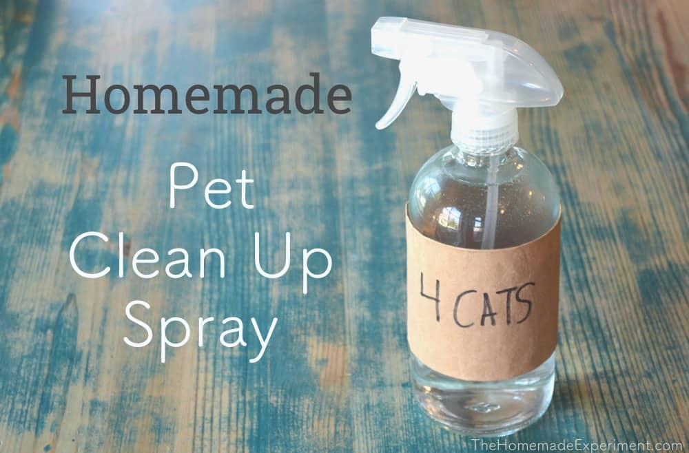 How To Make Homemade Pet Stain & Odor Spray