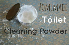 Homemade DIY Toilet Bowl Cleaner
