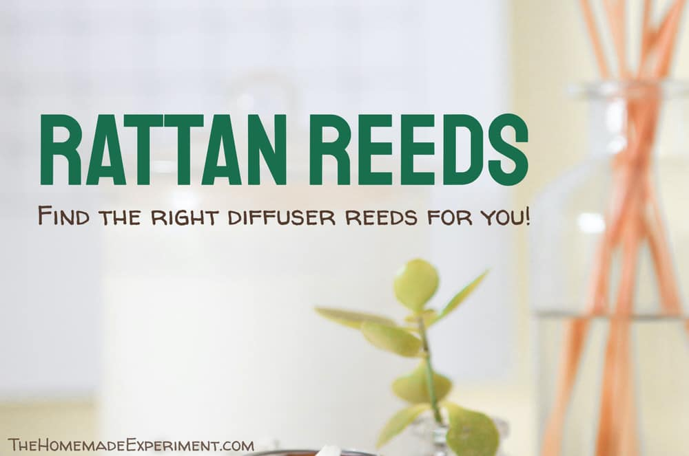 Rattan Diffuser Reed Buying Guide image of a rattan reed diffuser.