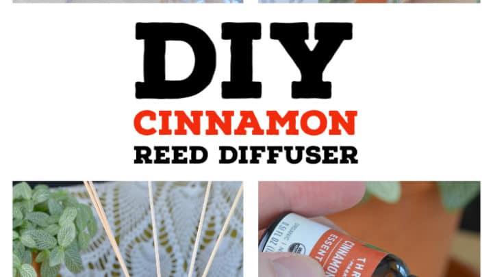 DIY Cinnamon Reed Diffuser